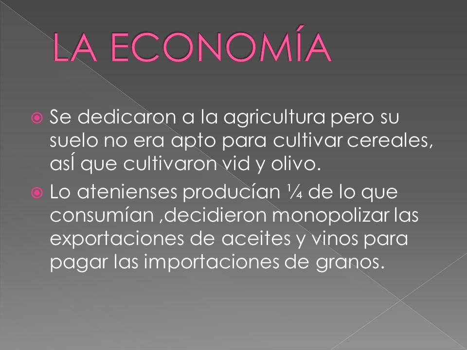 LA ECONOMÍASe dedicaron a la agricultura pero su suelo no era apto para cultivar cereales, asÍ que cultivaron vid y olivo.