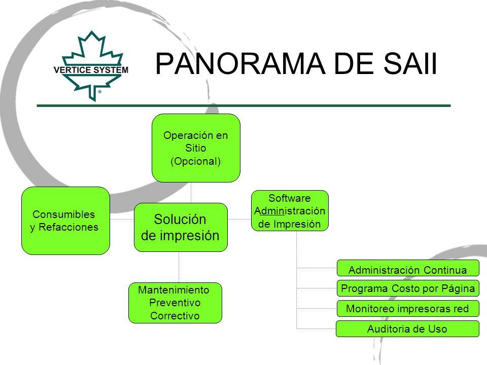 PANORAMA DE SAII Solución de impresión Operación en Sitio (Opcional)