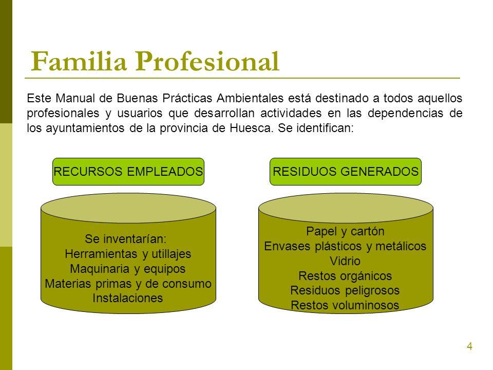 Familia Profesional