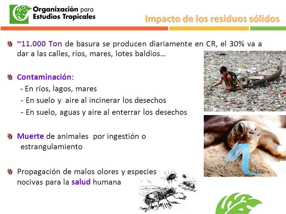 Impacto de los residuos sólidos