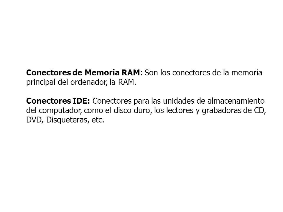 Conectores de Memoria RAM: Son los conectores de la memoria principal del ordenador, la RAM.