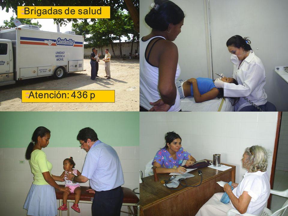 Brigadas de salud Atención: 436 p