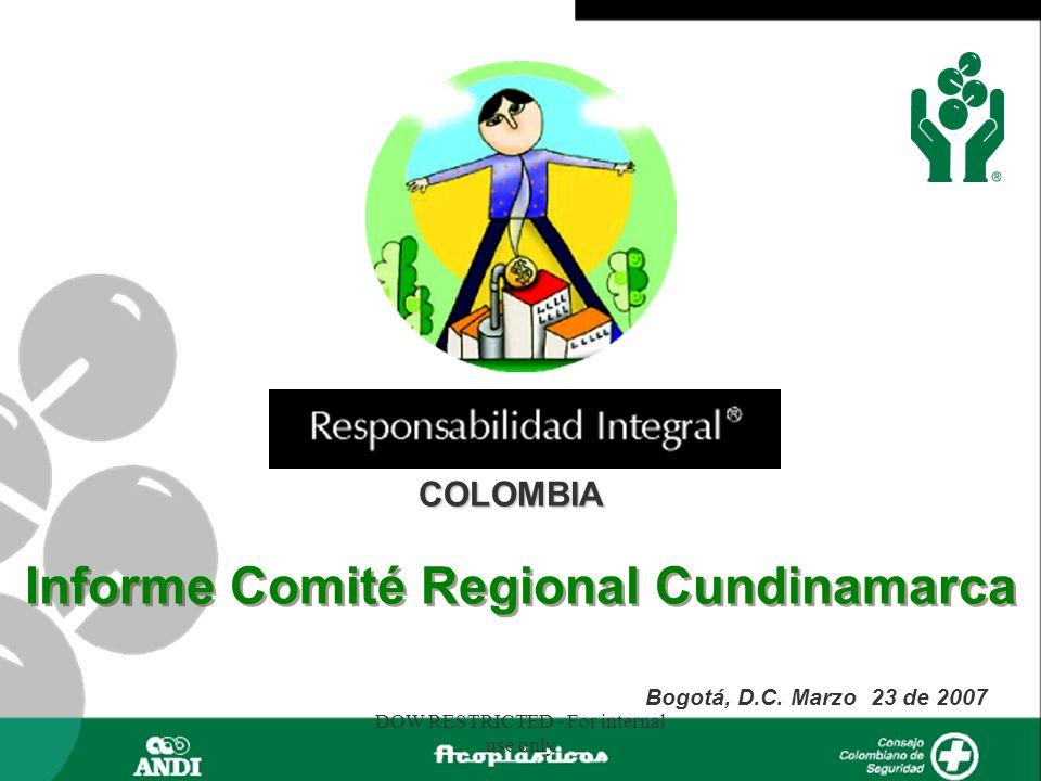 Informe Comité Regional Cundinamarca