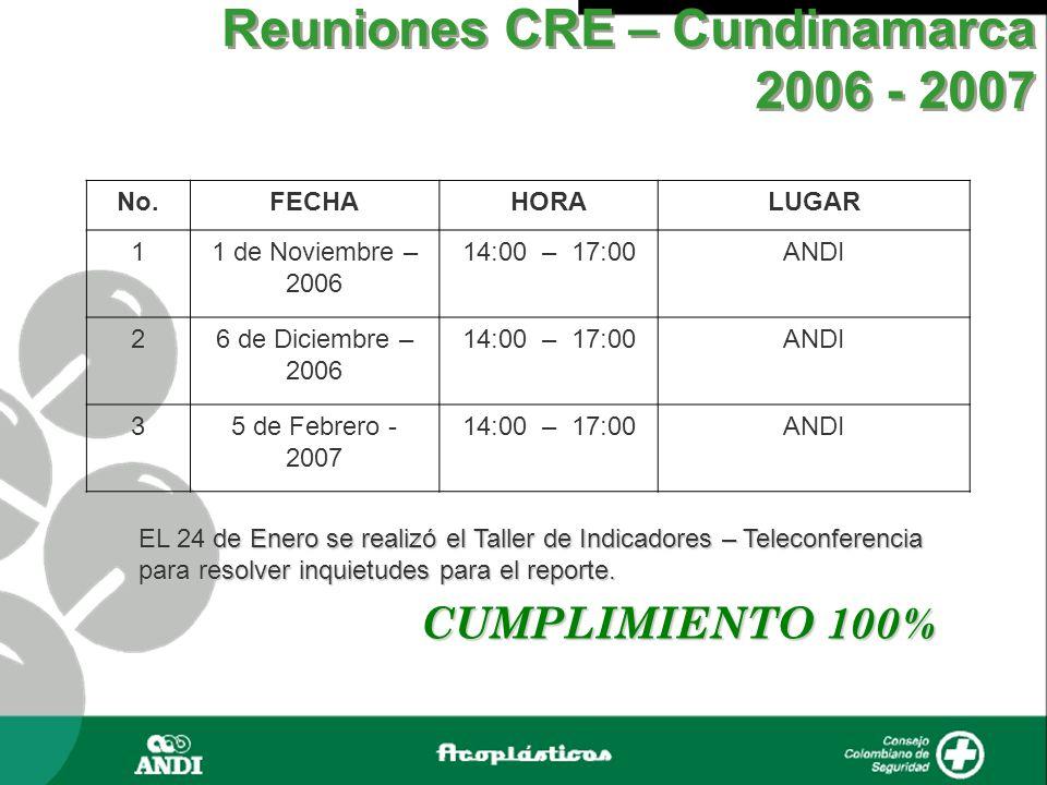 Reuniones CRE – Cundinamarca 2006 - 2007