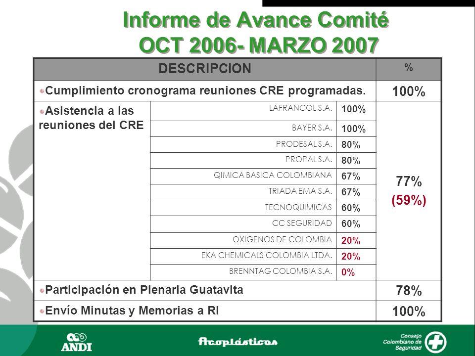 Informe de Avance Comité OCT 2006- MARZO 2007