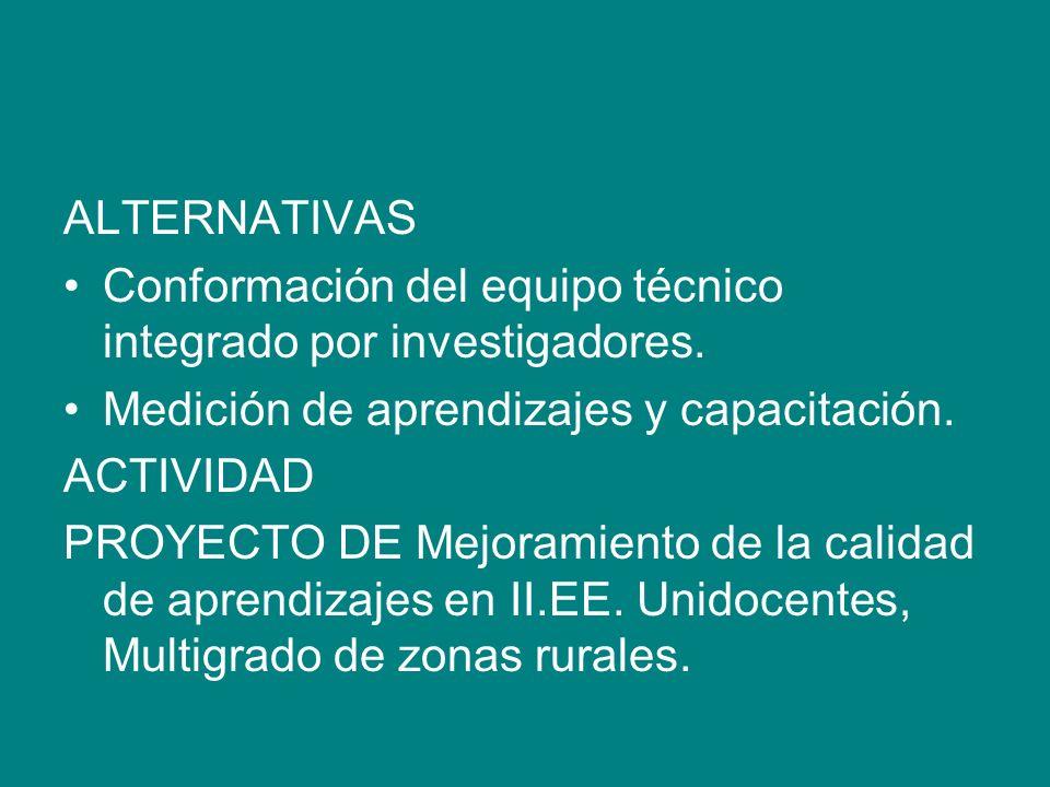 ALTERNATIVAS Conformación del equipo técnico integrado por investigadores. Medición de aprendizajes y capacitación.