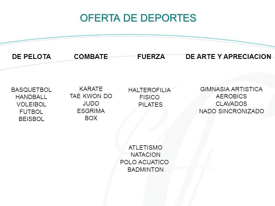 OFERTA DE DEPORTES DE PELOTA COMBATE FUERZA DE ARTE Y APRECIACION
