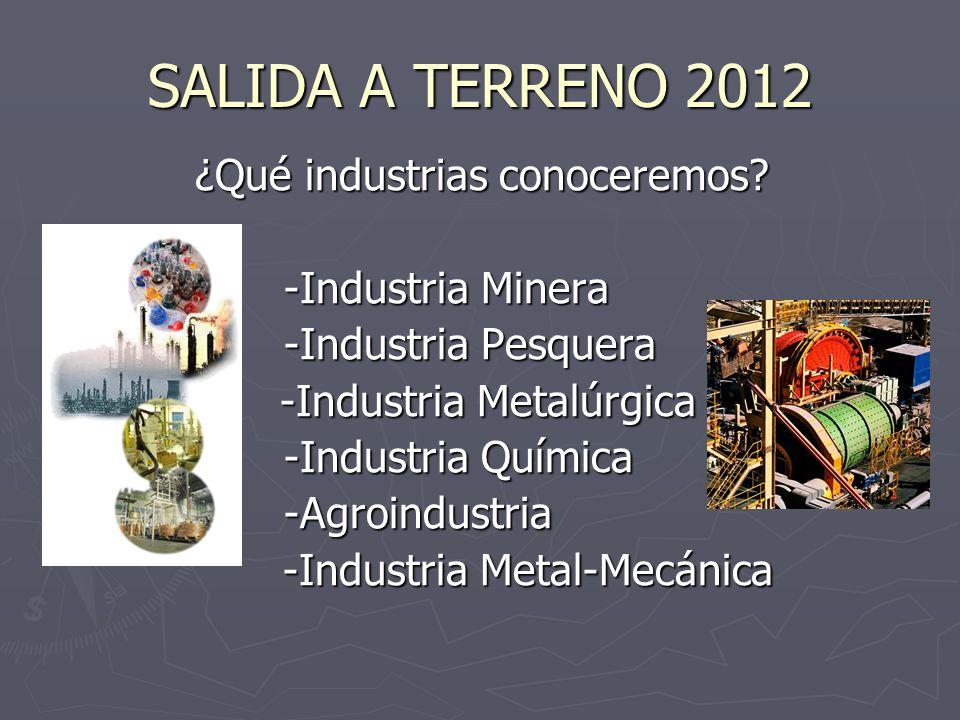 SALIDA A TERRENO 2012 ¿Qué industrias conoceremos -Industria Minera
