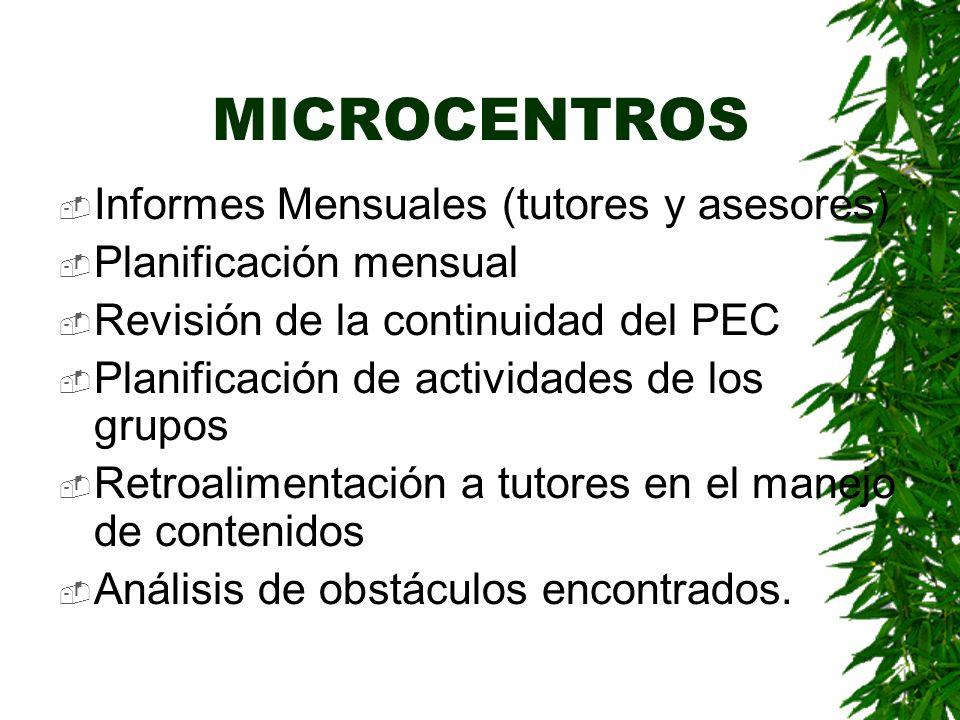 MICROCENTROS Informes Mensuales (tutores y asesores)