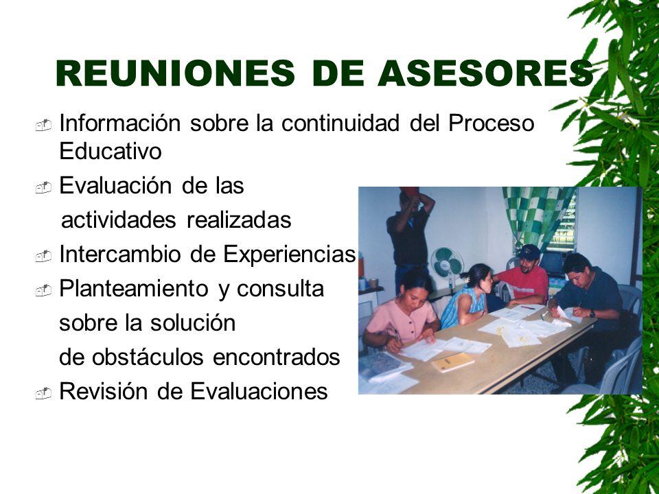 REUNIONES DE ASESORES Información sobre la continuidad del Proceso Educativo. Evaluación de las. actividades realizadas.