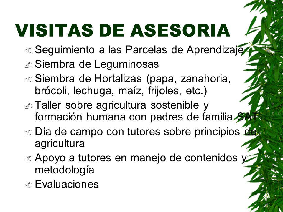VISITAS DE ASESORIA Seguimiento a las Parcelas de Aprendizaje