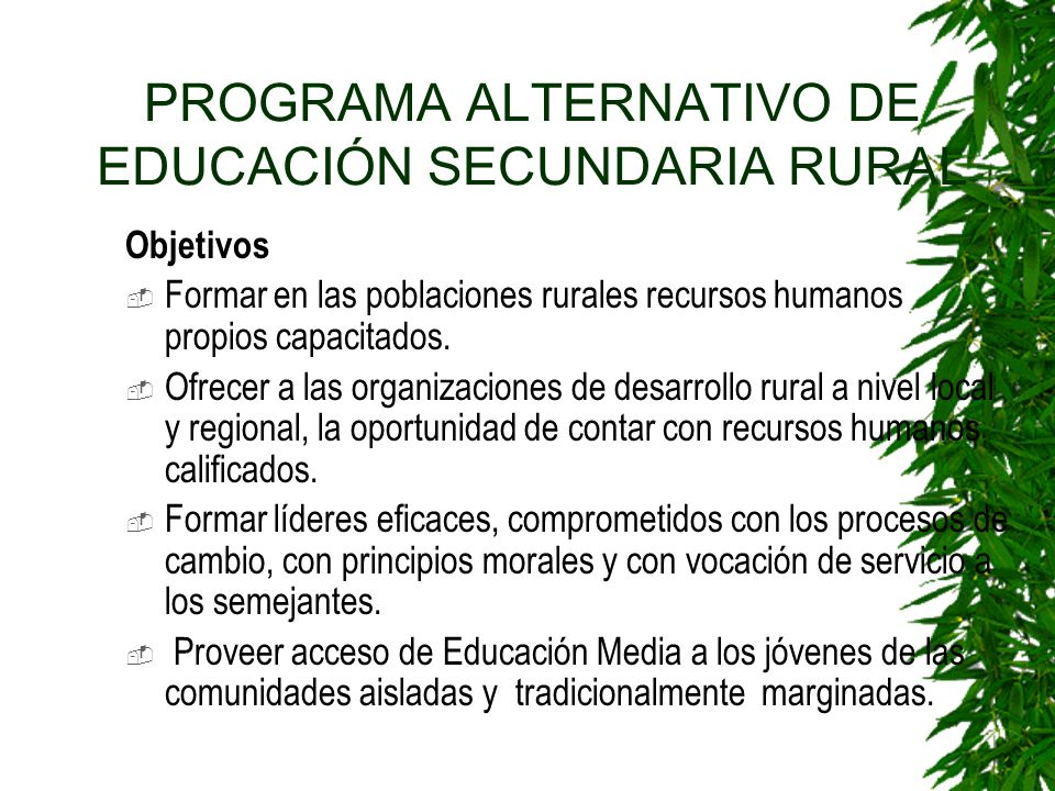 PROGRAMA ALTERNATIVO DE EDUCACIÓN SECUNDARIA RURAL
