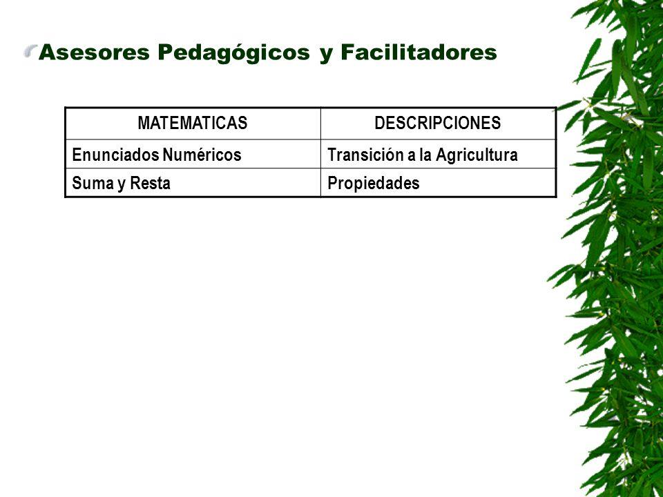 Asesores Pedagógicos y Facilitadores