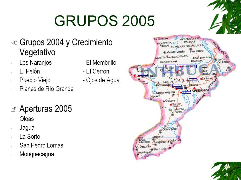GRUPOS 2005 Grupos 2004 y Crecimiento Vegetativo Aperturas 2005