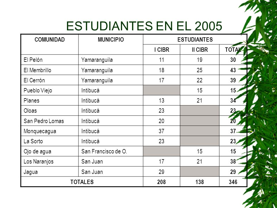 ESTUDIANTES EN EL 2005 COMUNIDAD MUNICIPIO ESTUDIANTES I CIBR II CIBR