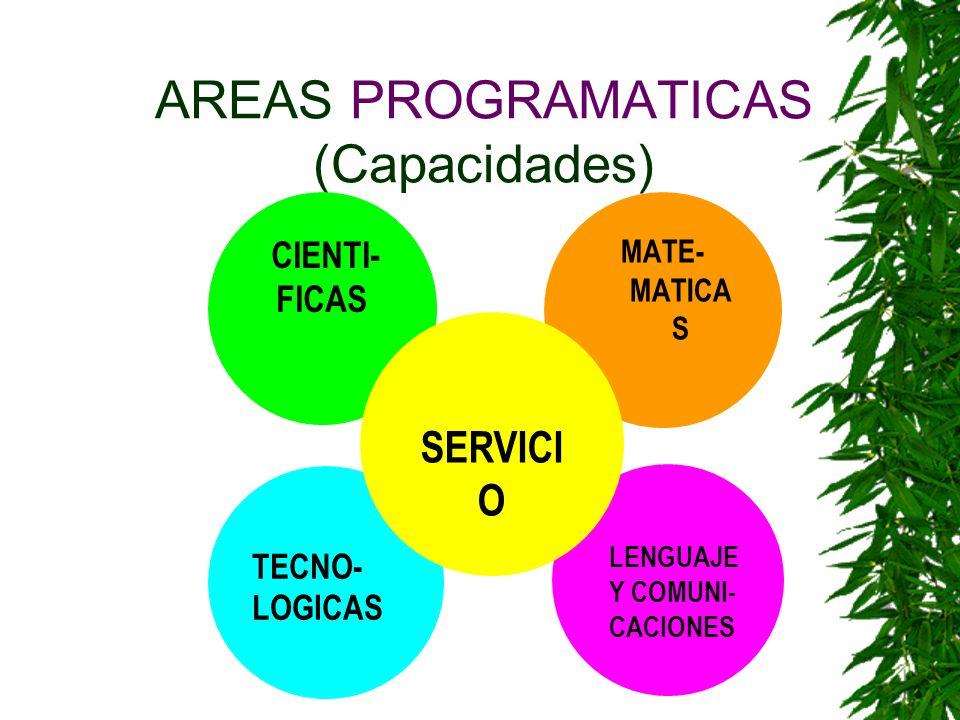 AREAS PROGRAMATICAS (Capacidades)
