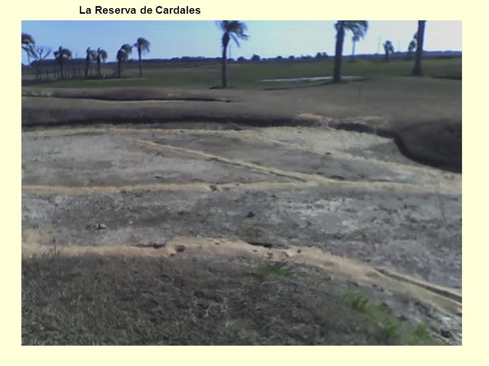 La Reserva de Cardales