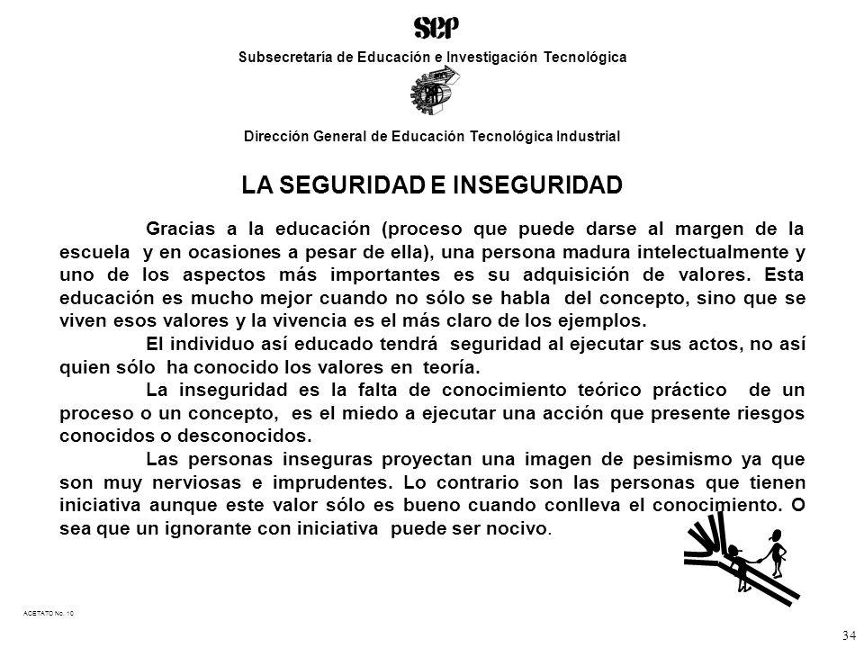 LA SEGURIDAD E INSEGURIDAD