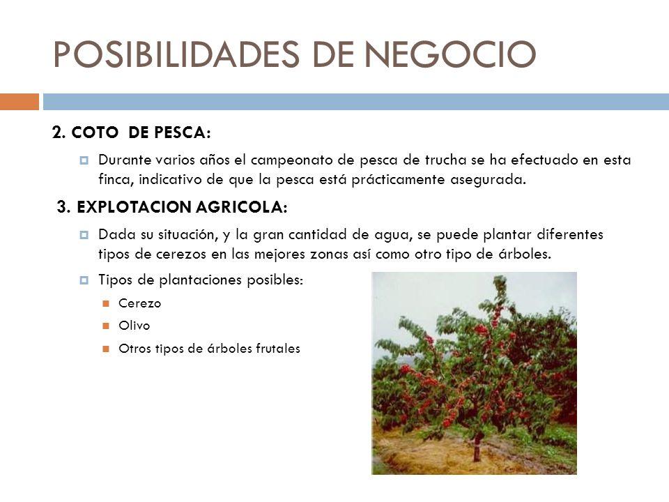 POSIBILIDADES DE NEGOCIO
