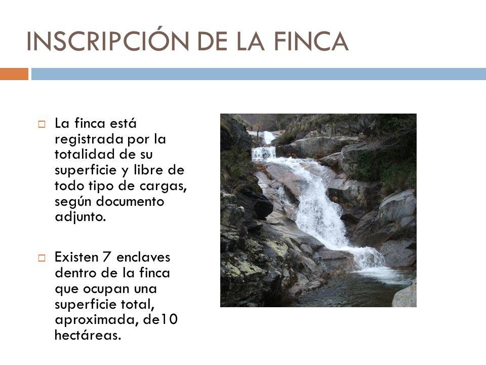 INSCRIPCIÓN DE LA FINCA