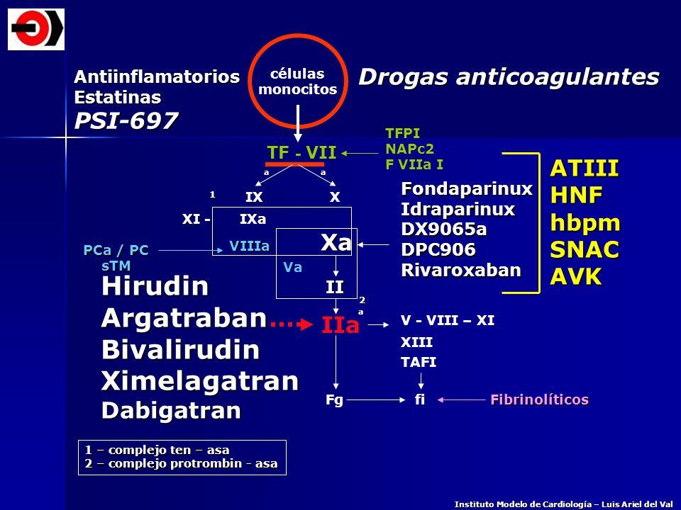 Hirudin Argatraban Bivalirudin Ximelagatran Drogas anticoagulantes