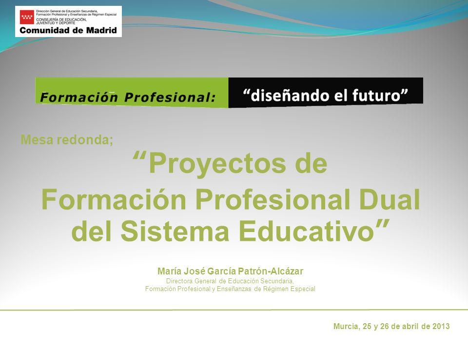 Proyectos de Formación Profesional Dual del Sistema Educativo
