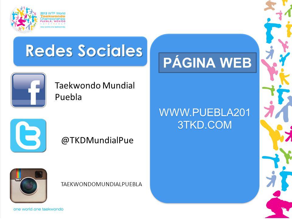 Redes Sociales PÁGINA WEB