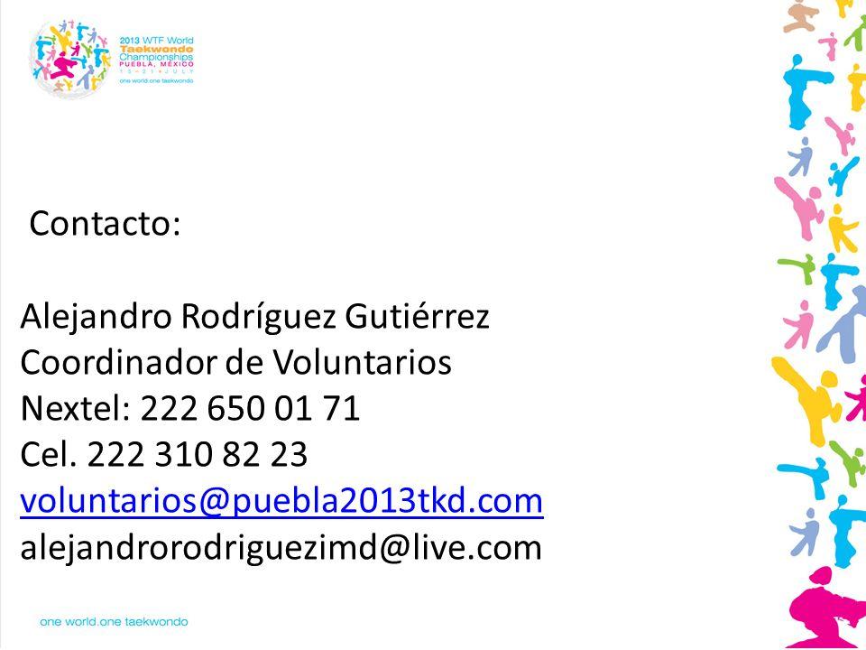GRACIAS Alejandro Rodríguez Gutiérrez Coordinador de Voluntarios