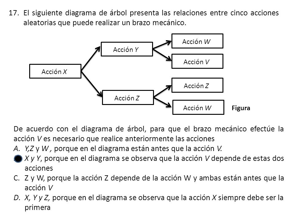 Y,Z y W , porque en el diagrama están antes que la acción V.