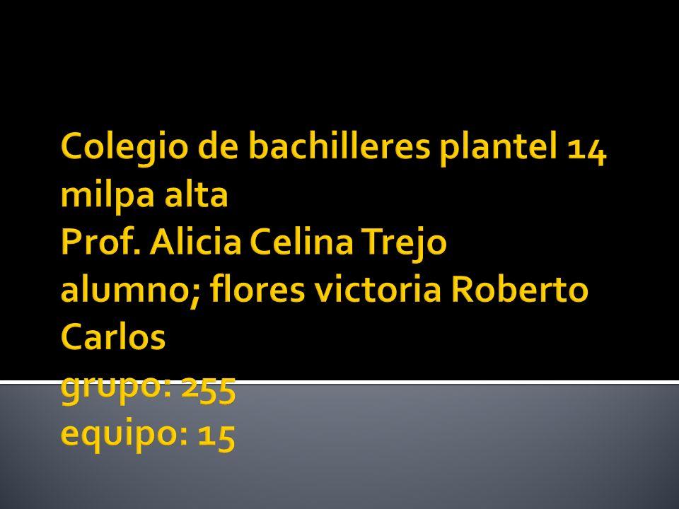 Colegio de bachilleres plantel 14 milpa alta Prof