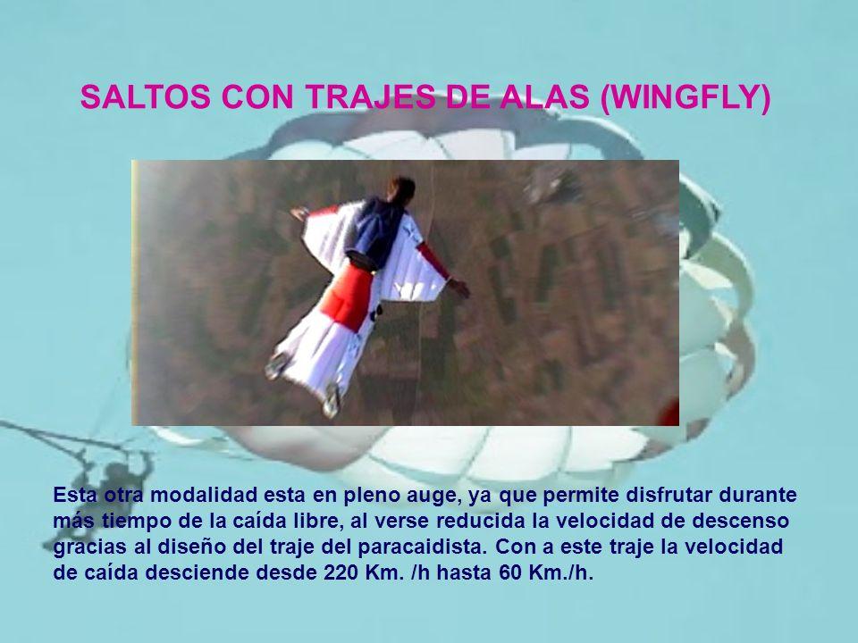 SALTOS CON TRAJES DE ALAS (WINGFLY)