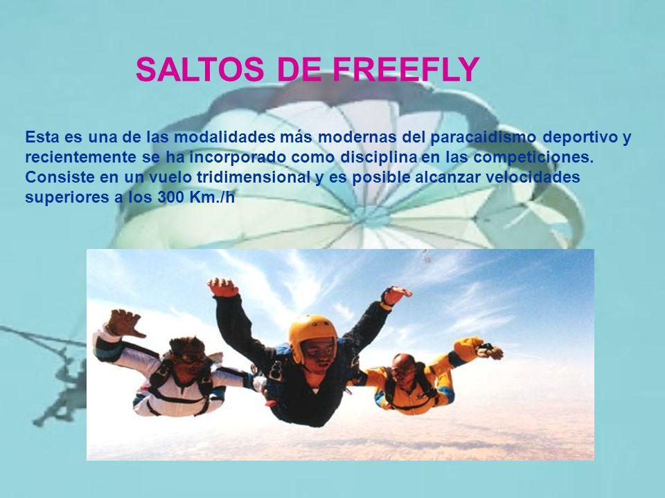 SALTOS DE FREEFLY