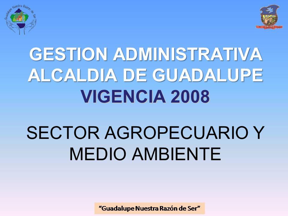 GESTION ADMINISTRATIVA ALCALDIA DE GUADALUPE VIGENCIA 2008 SECTOR AGROPECUARIO Y MEDIO AMBIENTE