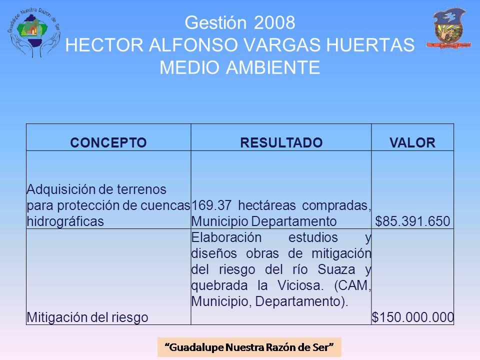 Gestión 2008 HECTOR ALFONSO VARGAS HUERTAS MEDIO AMBIENTE