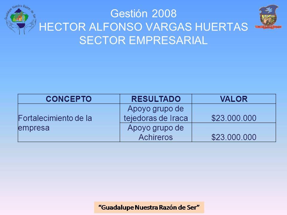 Gestión 2008 HECTOR ALFONSO VARGAS HUERTAS SECTOR EMPRESARIAL