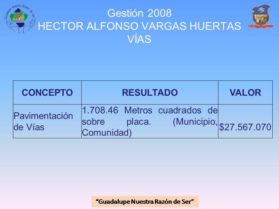 Gestión 2008 HECTOR ALFONSO VARGAS HUERTAS VÍAS