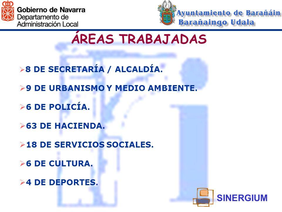 ÁREAS TRABAJADAS SINERGIUM 9 DE URBANISMO Y MEDIO AMBIENTE.