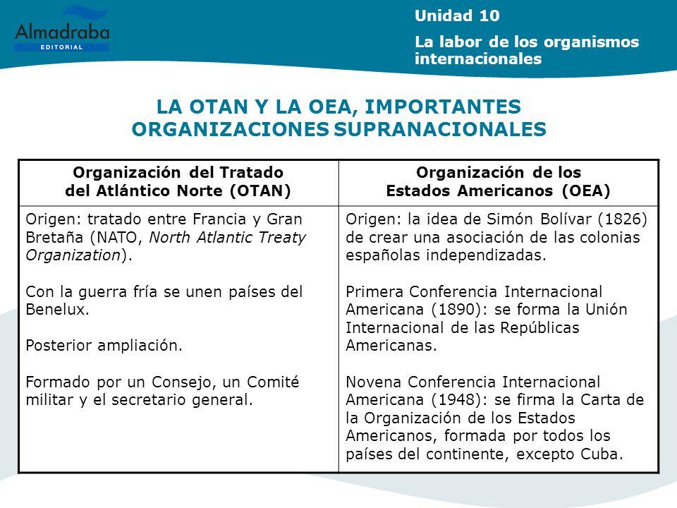 LA OTAN Y LA OEA, IMPORTANTES ORGANIZACIONES SUPRANACIONALES