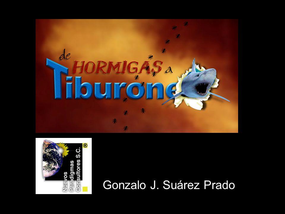 Gonzalo J. Suárez Prado