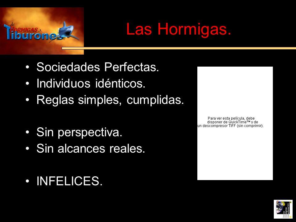 Las Hormigas. Sociedades Perfectas. Individuos idénticos.