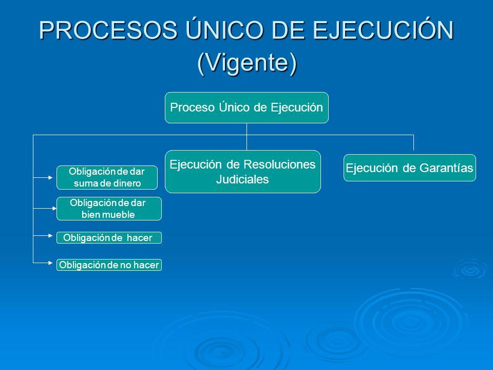 PROCESOS ÚNICO DE EJECUCIÓN (Vigente)