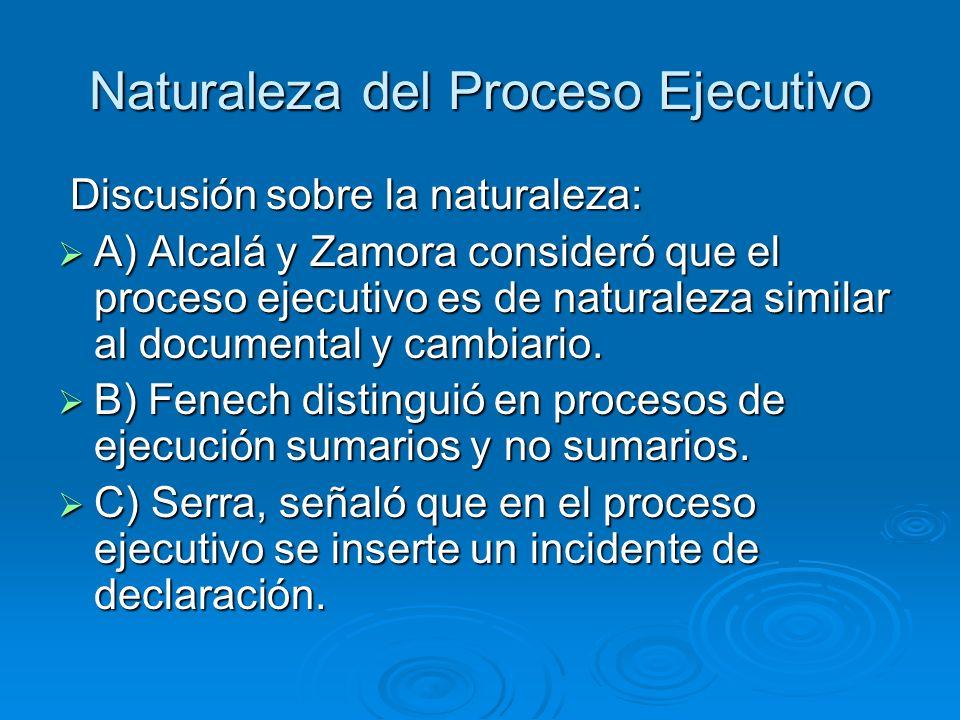 Naturaleza del Proceso Ejecutivo