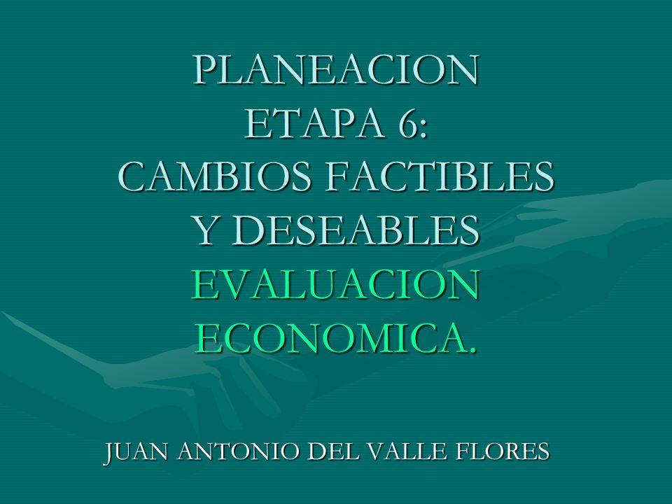 JUAN ANTONIO DEL VALLE FLORES
