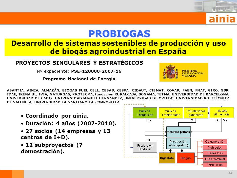 PROYECTOS SINGULARES Y ESTRATÉGICOS Programa Nacional de Energía
