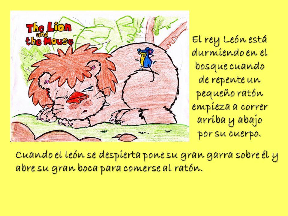 El rey León está durmiendo en el bosque cuando de repente un pequeño ratón empieza a correr arriba y abajo por su cuerpo.