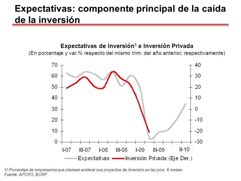 Expectativas: componente principal de la caída de la inversión