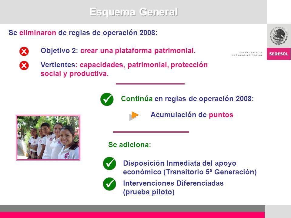   Esquema General Se eliminaron de reglas de operación 2008: