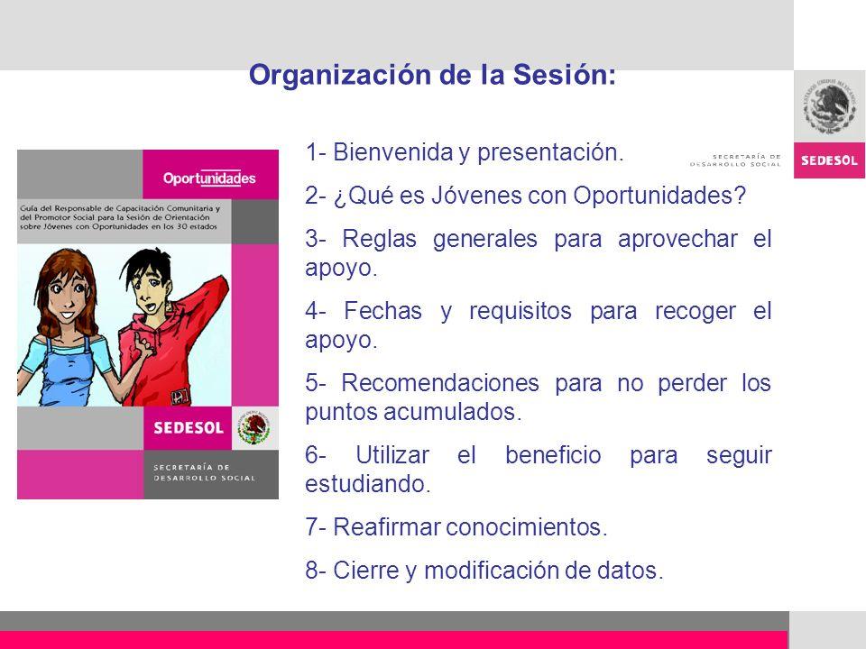 Organización de la Sesión: