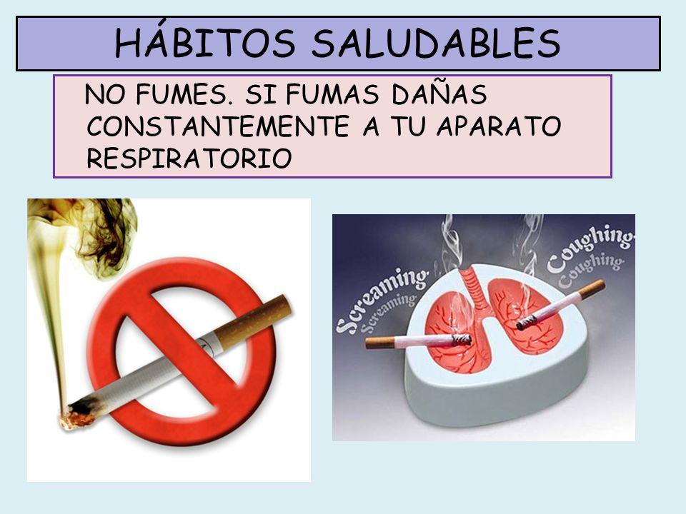 HÁBITOS SALUDABLES NO FUMES. SI FUMAS DAÑAS CONSTANTEMENTE A TU APARATO RESPIRATORIO