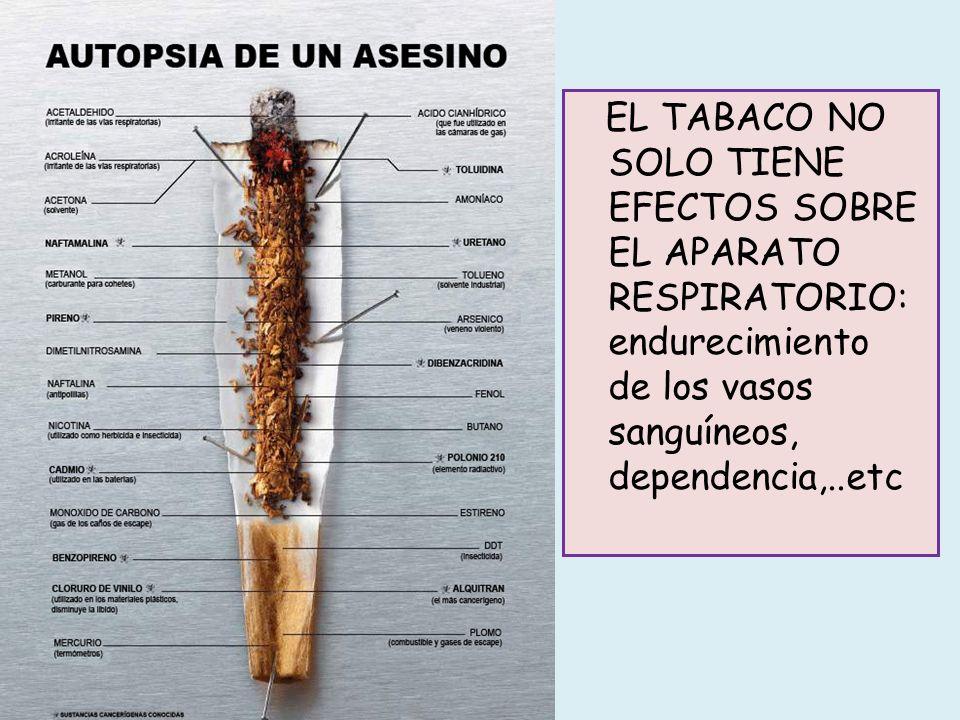 EL TABACO NO SOLO TIENE EFECTOS SOBRE EL APARATO RESPIRATORIO: endurecimiento de los vasos sanguíneos, dependencia,..etc